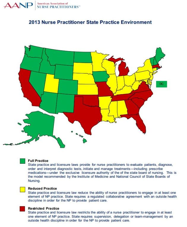 2013 NP State Practice Environment